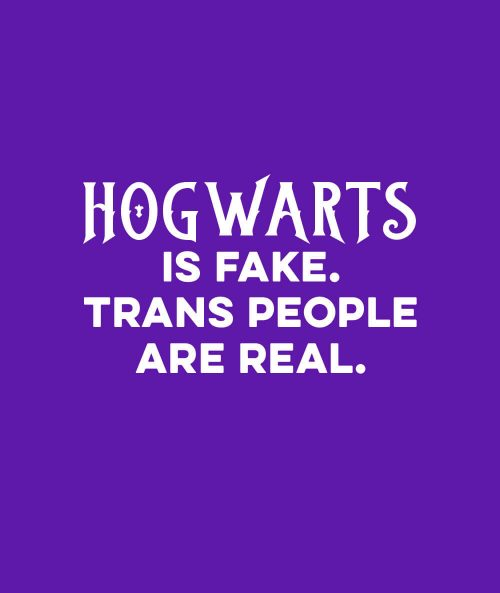 Hogwarts Is Fake, Trans People Are Real T-shirt